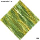 Wild Beasts - Stray (CDS)