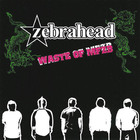 Zebrahead - Waste Of MFZB