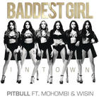 Pitbull - Baddest Girl In Town (CDS)