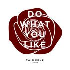 Taio Cruz - Do What You Like (CDS)