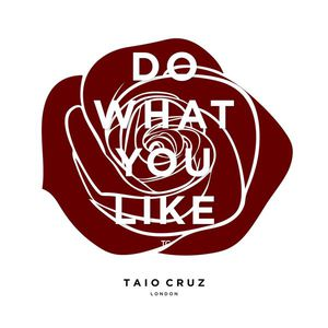 Do What You Like (CDS)