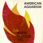 American Aquarium - Burn Flicker Die