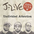 Undivided Attention