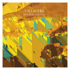 Villagers - Nothing Arrived (CDS)