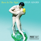 Ryan Adams - Burn In The Night (CDS)