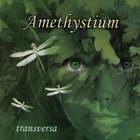Amethystium - Transversa