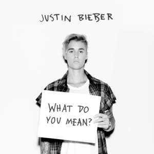 What Do You Mean? (CDS)