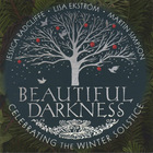 Martin Simpson - Beautiful Darkness, Celebrating The Winter Solstice
