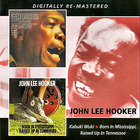 John Lee Hooker - Kabuki Wuki / Born In Mississippi CD1