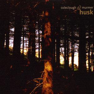 Husk (With Murmer) CD1
