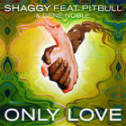 Shaggy - Only Love (CDS)