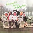 Remember You're A Womble (Vinyl)