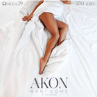 Akon - Want Some (Feat. Dj Chose) (CDS)