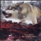 The Best Of Wayne Gro (EP)