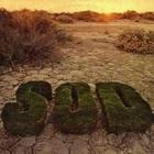 SOD (Vinyl)