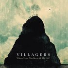 Villagers - Where Have You Been All My Life? (Live At Rak)