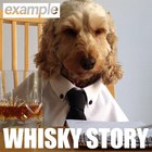 Example - Whisky Story (CDS)
