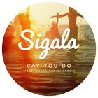Say You Do (CDS)