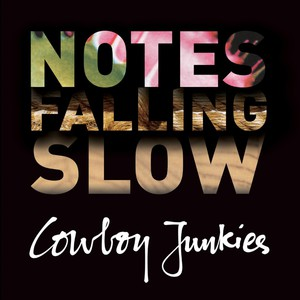 Notes Falling Slow CD4