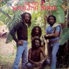 Wailing Souls - The Best Of Wailing Soul (Vinyl)
