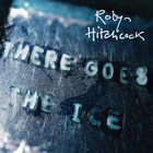 Robyn Hitchcock - There Goes The Ice