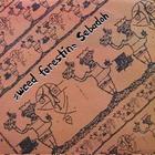Sebadoh - Weed Forestin (Vinyl)