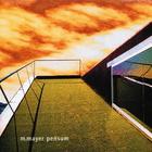 Michael Mayer - Pensum (VLS)