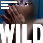 Terranova - Wild Soundtrack CD2