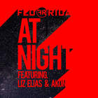Flo Rida - At Night (CDS)