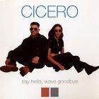 Say Hello, Wave Goodbye (CDS)