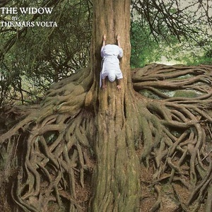 The Widow (CDS)