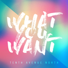 Tenth Avenue North - What You Want (CDS)
