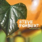 Steve Forbert - Evergreen Boy