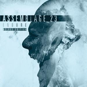 Endure (Deluxe Edition) CD2