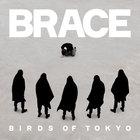 Birds Of Tokyo - Brace (CDS)