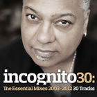 Incognito 30: The Essential Mixes (2003-2012) CD3