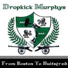 Dropkick Murphys - Live At Hultsfredsfestivalen