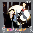 INXS - What You Need (Extended Mix) (VLS)