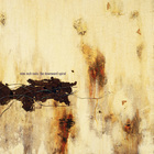 Nine Inch Nails - The Downward Spiral (Definitive Edition Remastered)