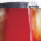 Nine Inch Nails - The Fragile (Definitive Edition Remastered)