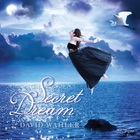 David Wahler - Secret Dream