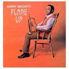 Flare Up (Vinyl)