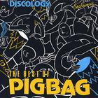 The Best Of Pigbag