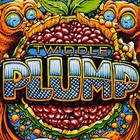 Twiddle - Plump (Chapters 1 & 2) CD2
