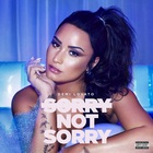 Sorry Not Sorry (CDS)