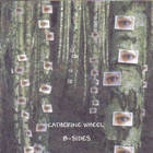 Catherine Wheel - Complete B-Sides Volume 4