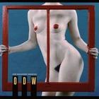 Moving Windows (Vinyl)