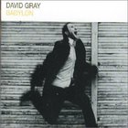 David Gray - Babylon (CDS)