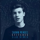 Shawn Mendes - Stitches (Seeb Remix) (CDS)