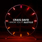 Craig David - I Know You (CDS)
